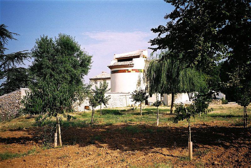Cezannea
