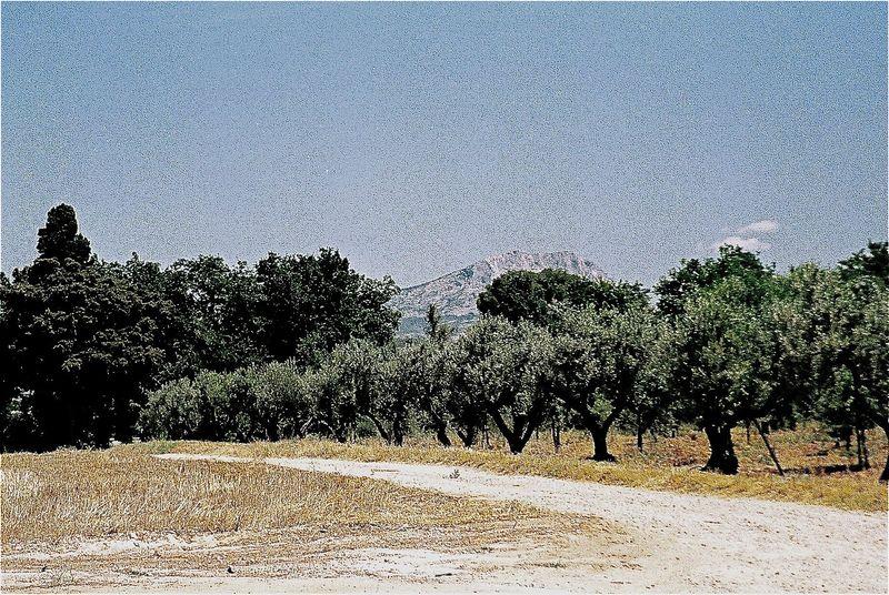 Cezannes
